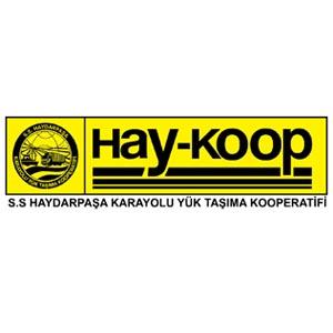 S.s Haydarpaşa